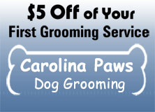 $5 Off, Dog Grooming in Columbia, South Carolina